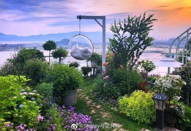 Người phụ nữ 40 tuổi nghỉ hưu sớm, dùng tiền dành dụm cả đời để đổi lấy khu vườn rực rỡ như thiên đường trên đồi hướng biển - Ảnh 10.