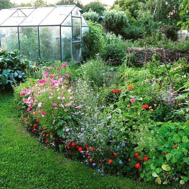 Khu vườn 100 năm vẫn xanh tươi, ngập tràn rau trái nhờ có sự vun đắp của nhiều thế hệ - Ảnh 2.