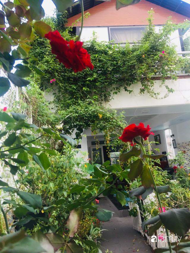 Khu vườn 30m² muôn hoa đua nở trên sân thượng của bà mẹ 3 con ở TP. HCM - Ảnh 17.