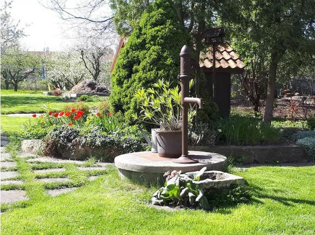 Khu vườn 100 năm vẫn xanh tươi, ngập tràn rau trái nhờ có sự vun đắp của nhiều thế hệ - Ảnh 17.