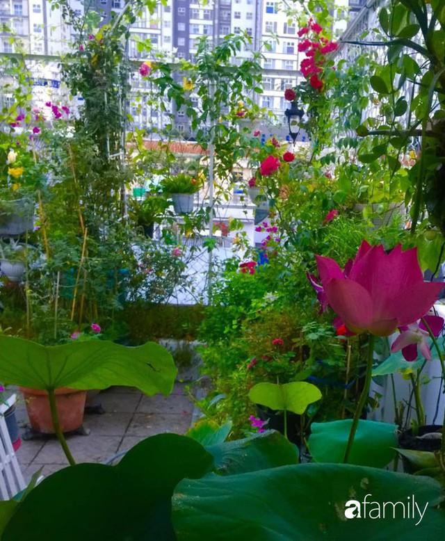 Khu vườn 30m² muôn hoa đua nở trên sân thượng của bà mẹ 3 con ở TP. HCM - Ảnh 34.