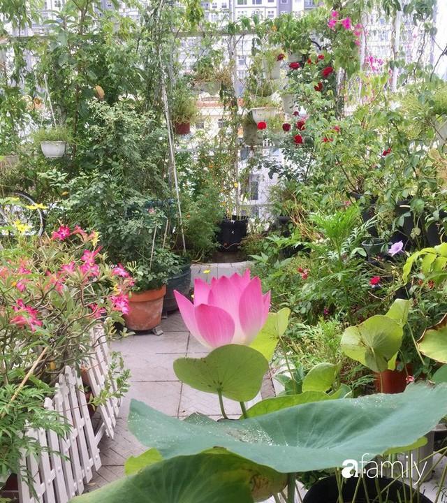 Khu vườn 30m² muôn hoa đua nở trên sân thượng của bà mẹ 3 con ở TP. HCM - Ảnh 10.