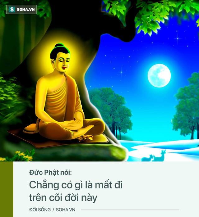 Đức Phật nói có 3 quy luật trên đời ai cũng cần thấu tỏ, lĩnh hội được tất sẽ sống an yên - Ảnh 1.