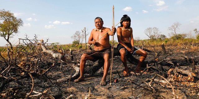 Tù trưởng bản địa gần rừng Amazon và thông điệp cay đắng: Rồi các anh sẽ chìm trong sợ hãi, như cảm giác chúng tôi đang trải qua lúc này - Ảnh 2.