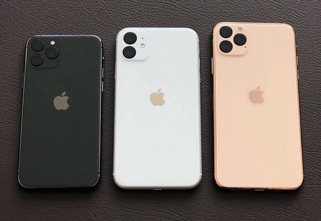 Với 3 mẫu iPhone 11 cho năm nay và iPhone SE 2 cho đầu năm sau, Apple có lẽ sắp khai tử chiến lược đầu bảng năm ngoái - Ảnh 3.