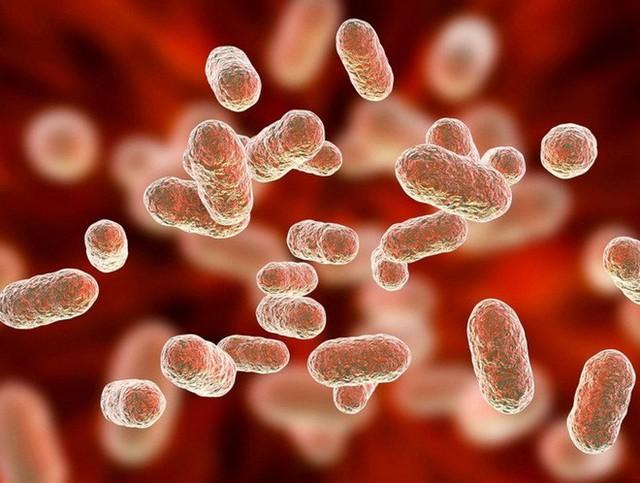 """Tưởng đâu xa lạ, chính vi khuẩn đường ruột có thể là nguyên nhân khiến tâm trạng bạn """"mưa nắng thất thường""""? - Ảnh 3."""