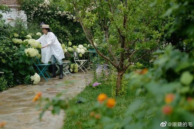 Cô gái trẻ bỏ ra 1,3 tỷ đồng cải tạo đất, mua giống hoa, biến sân nhà thành khu vườn đẹp lung linh  - Ảnh 15.