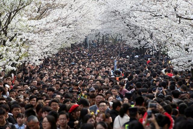 Trung Quốc rúng động, không thể tin nổi tỉnh 80 triệu dân tuyên bố có... 17 người nghèo - Ảnh 1.