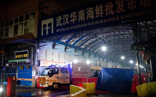 Virus gây bệnh phổi bí ẩn ở Trung Quốc là một chủng chưa từng được biết đến - Ảnh 4.