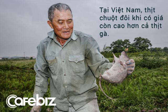 Năm Canh Tý nói chuyện chuột: Món ăn đặc sản của Việt Nam - Ảnh 2.