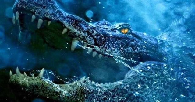 1001 thắc mắc: Vì sao cá sấu nuốt mồi dưới nước mà không bị sặc? - Ảnh 1.