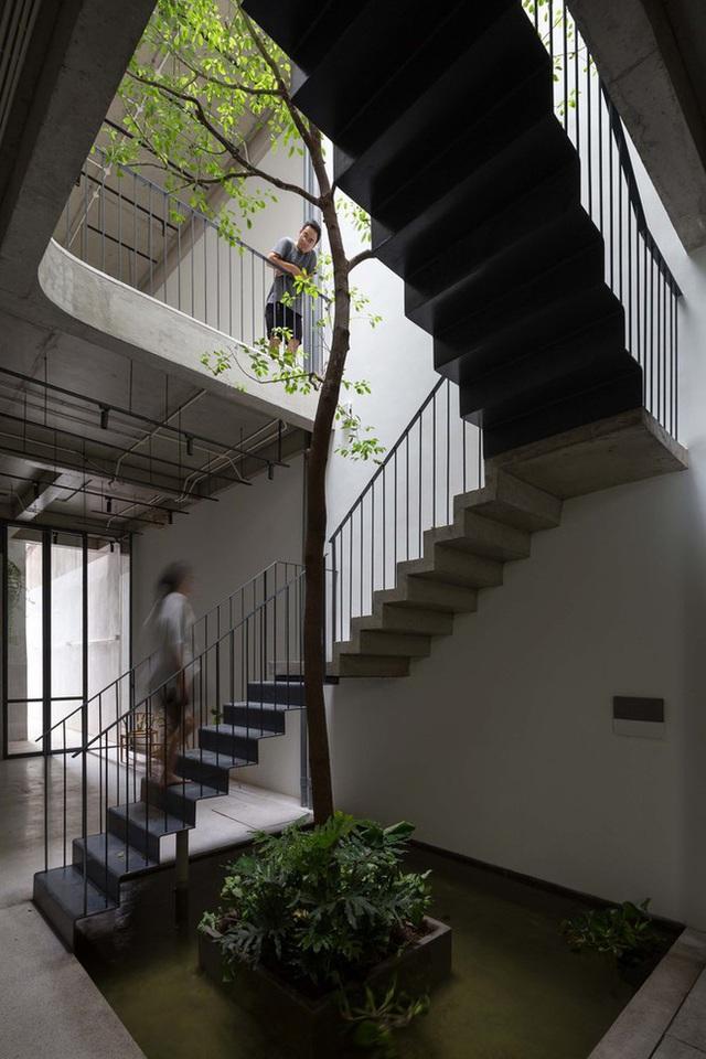 Hà Nội: Có gì trong ngôi nhà kết nối truyền thống và hiện đại? - Ảnh 12.
