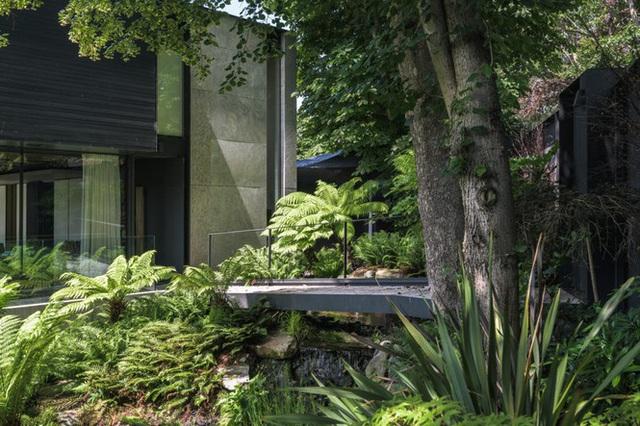 Đã mắt với vẻ đẹp ngôi nhà giữa rừng ngắm mãi không chán - Ảnh 7.