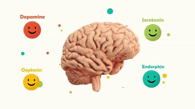 Làm sao để tập luyện não bộ tiết ra nhiều hooc-môn hạnh phúc hơn? - Ảnh 1.