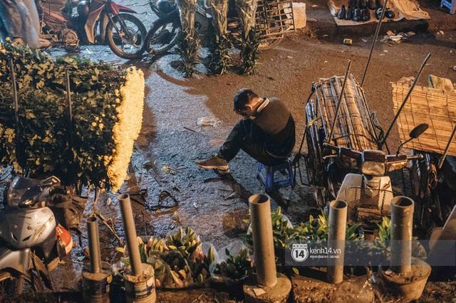 Những người nông dân chong lều canh đào, quất giữa cái lạnh 14 độ C của Hà Nội: Như đánh một canh bạc, bại nhiều hơn thắng - Ảnh 1.