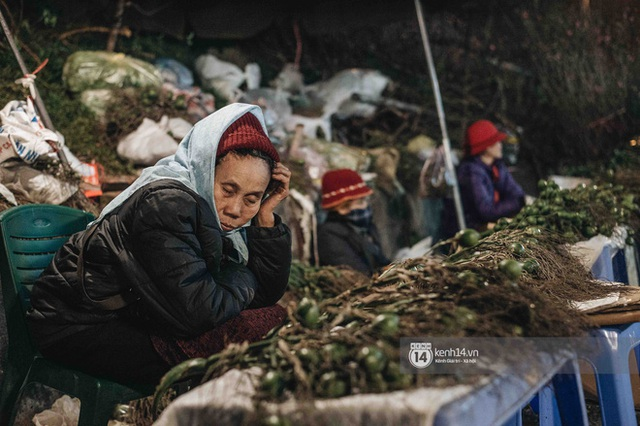 Những người nông dân chong lều canh đào, quất giữa cái lạnh 14 độ C của Hà Nội: Như đánh một canh bạc, bại nhiều hơn thắng - Ảnh 11.