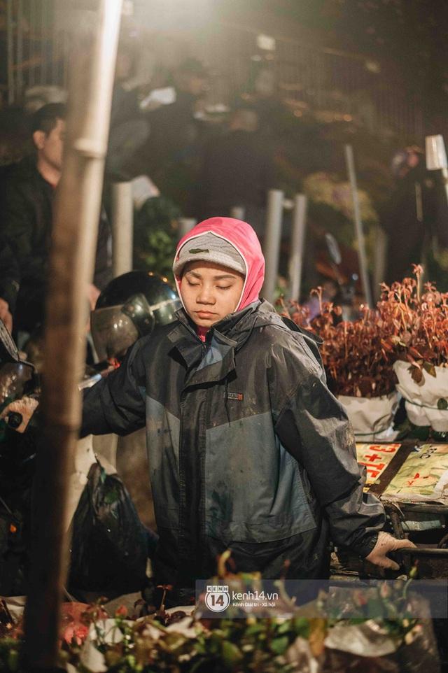 Những người nông dân chong lều canh đào, quất giữa cái lạnh 14 độ C của Hà Nội: Như đánh một canh bạc, bại nhiều hơn thắng - Ảnh 4.