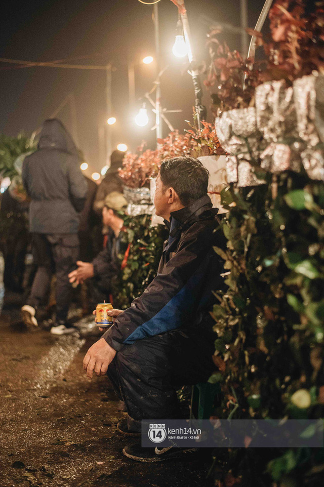 Những người nông dân chong lều canh đào, quất giữa cái lạnh 14 độ C của Hà Nội: Như đánh một canh bạc, bại nhiều hơn thắng - Ảnh 5.