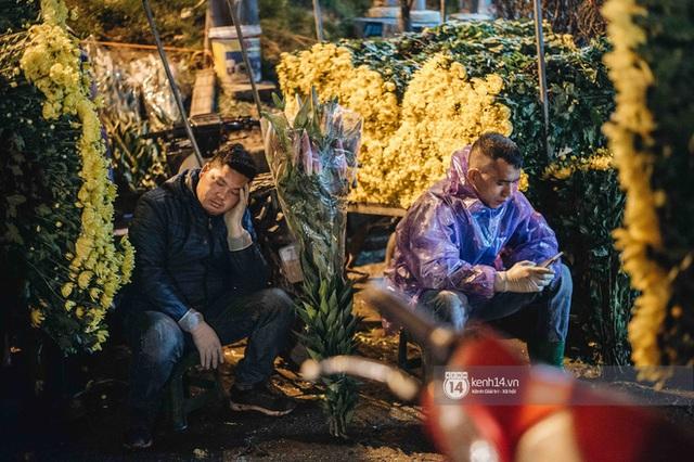 Những người nông dân chong lều canh đào, quất giữa cái lạnh 14 độ C của Hà Nội: Như đánh một canh bạc, bại nhiều hơn thắng - Ảnh 10.