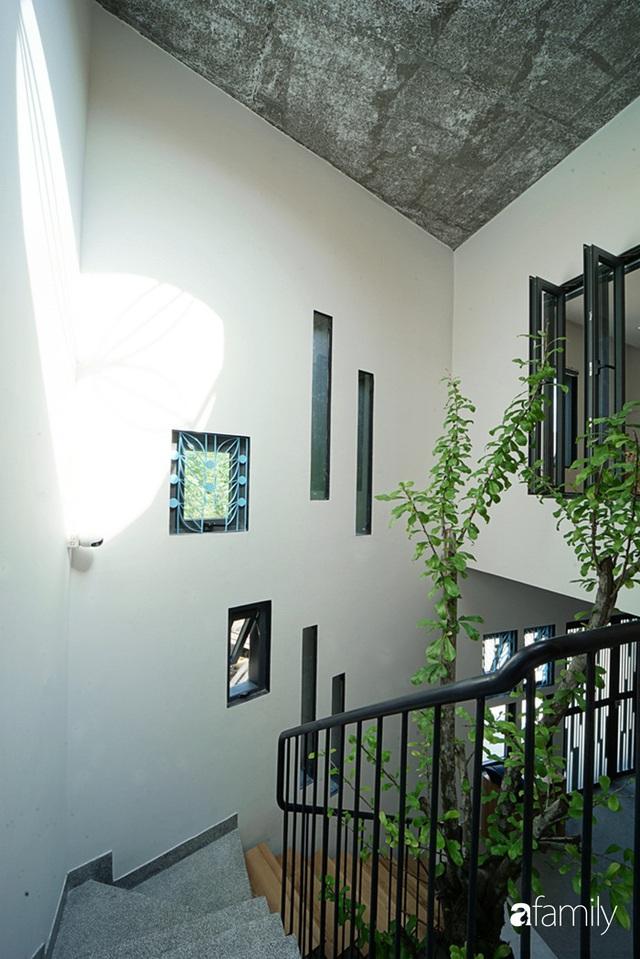 Ngôi nhà đẹp mộng mơ với cây xanh và ánh sáng của chủ nhà say đắm cúc họa mi ở miền Trung - Ảnh 19.