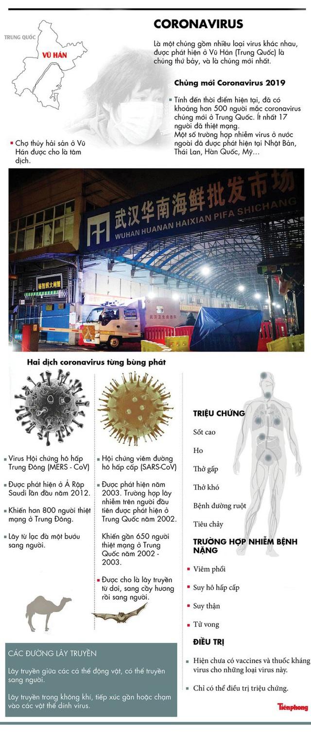 Đà Nẵng cách ly thêm 11 người bị sốt, có 4 người Việt Nam - Ảnh 1.