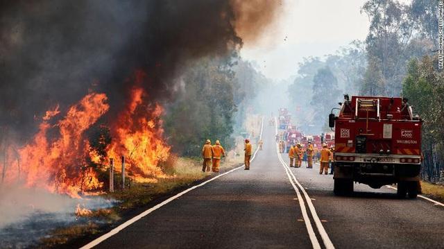 Gần NỬA TỈ sinh vật bị thiêu rụi, 1/3 số gấu koala chết cháy: Úc đang trải qua trận cháy rừng đại thảm họa thực sự mà chưa nhìn thấy lối thoát - Ảnh 14.