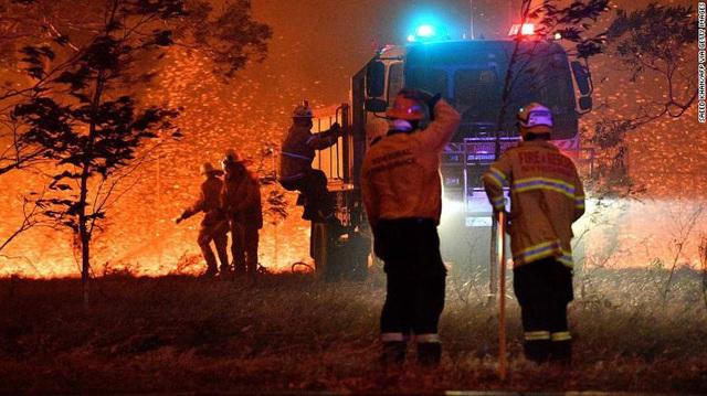 Gần NỬA TỈ sinh vật bị thiêu rụi, 1/3 số gấu koala chết cháy: Úc đang trải qua trận cháy rừng đại thảm họa thực sự mà chưa nhìn thấy lối thoát - Ảnh 15.
