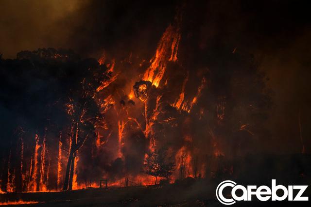 Biến đổi khí hậu: Nguyên nhân sâu xa khiến nước Úc chìm trong biển lửa? - Ảnh 2.