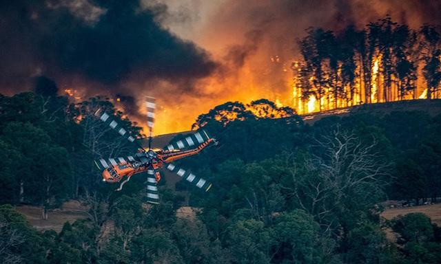 Nền du lịch Úc thiệt hại nặng nề vì thảm hoạ cháy rừng, loạt ảnh Before/After càng khiến cả thế giới xót xa hơn - Ảnh 1.