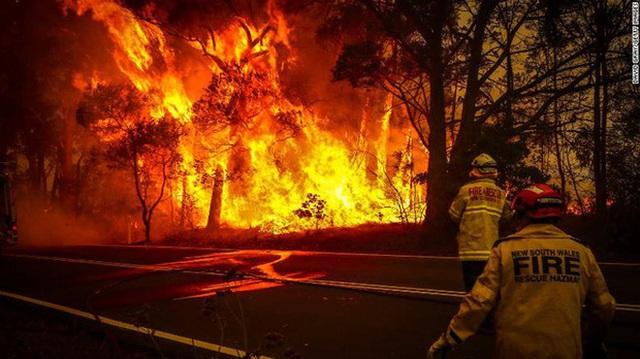 Nền du lịch Úc thiệt hại nặng nề vì thảm hoạ cháy rừng, loạt ảnh Before/After càng khiến cả thế giới xót xa hơn - Ảnh 13.