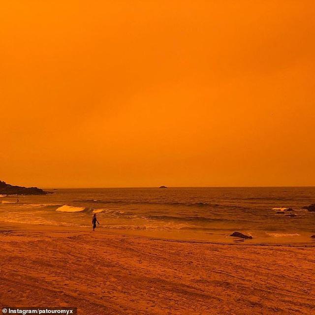 Nền du lịch Úc thiệt hại nặng nề vì thảm hoạ cháy rừng, loạt ảnh Before/After càng khiến cả thế giới xót xa hơn - Ảnh 14.