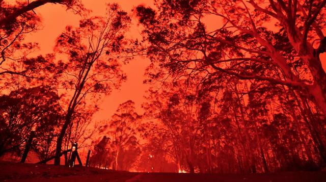 Nền du lịch Úc thiệt hại nặng nề vì thảm hoạ cháy rừng, loạt ảnh Before/After càng khiến cả thế giới xót xa hơn - Ảnh 15.