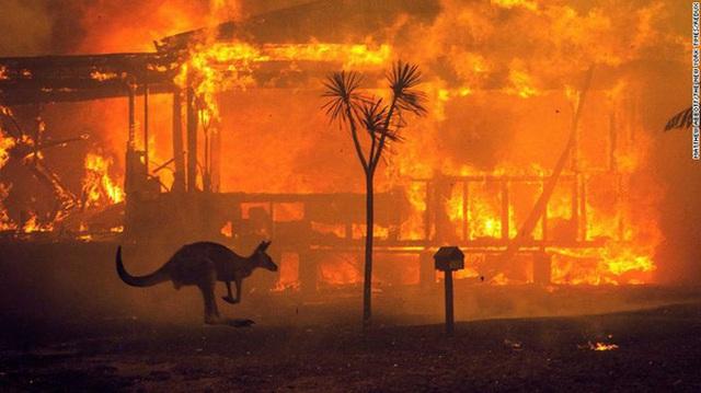 Nền du lịch Úc thiệt hại nặng nề vì thảm hoạ cháy rừng, loạt ảnh Before/After càng khiến cả thế giới xót xa hơn - Ảnh 16.