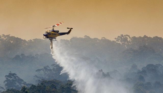 Số tiền hàng chục triệu USD quyên góp giúp nước Úc giữa thảm họa cháy rừng được sử dụng như thế nào? - Ảnh 2.