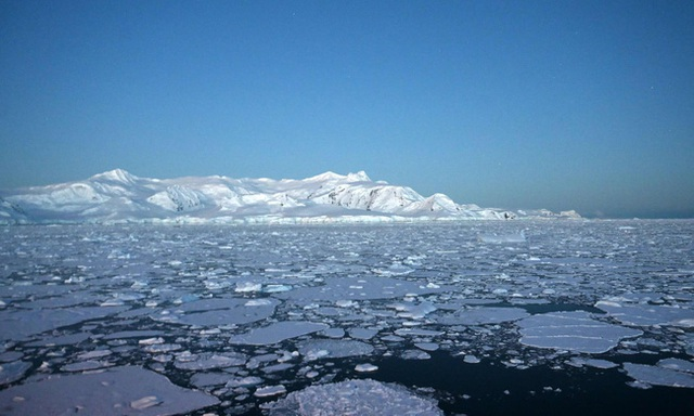 Dịch viêm phổi bùng phát, Nam Cực nóng 20 độ, 400 tỷ con châu chấu xâm lược: Trái Đất của chúng ta hiện tại có đang ổn không? - Ảnh 1.