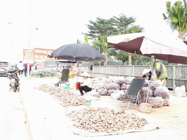 Khoai lang Nhật giải cứu đầy vỉa hè Hà Nội, thương nhân bán giá 13.000 đồng/kg - Ảnh 1.