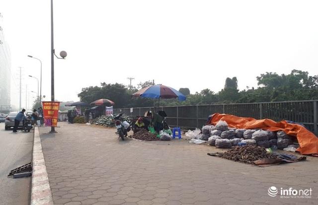Khoai lang Nhật giải cứu đầy vỉa hè Hà Nội, thương nhân bán giá 13.000 đồng/kg - Ảnh 13.