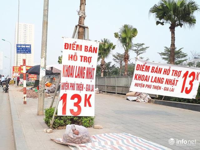 Khoai lang Nhật giải cứu đầy vỉa hè Hà Nội, thương nhân bán giá 13.000 đồng/kg - Ảnh 4.