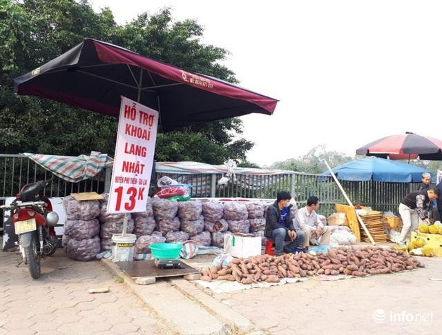 Khoai lang Nhật giải cứu đầy vỉa hè Hà Nội, thương nhân bán giá 13.000 đồng/kg - Ảnh 7.
