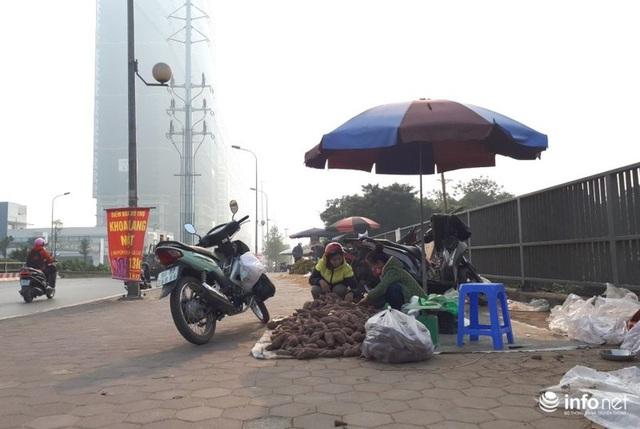 Khoai lang Nhật giải cứu đầy vỉa hè Hà Nội, thương nhân bán giá 13.000 đồng/kg - Ảnh 8.