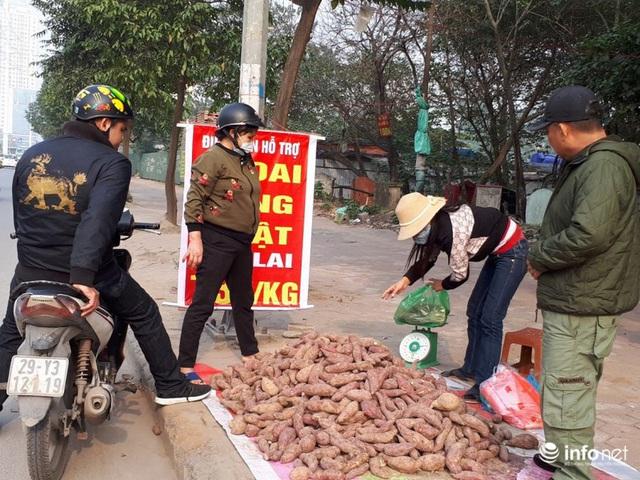 Khoai lang Nhật giải cứu đầy vỉa hè Hà Nội, thương nhân bán giá 13.000 đồng/kg - Ảnh 10.