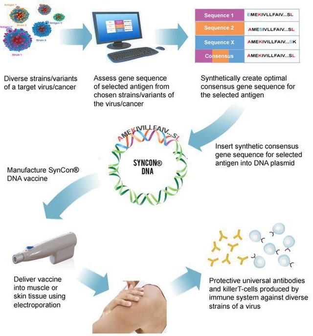 Bên trong cuộc đua điều chế vắc-xin cho Covid-19: Những công nghệ mới, quy trình mới và kỷ lục mới - Ảnh 3.