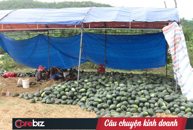 Đại dịch Corona đang khiến ngành nông sản Việt gặp khó, nông dân và đầu nậu làm thanh long, sầu riêng và mít tìm hướng ra - Ảnh 2.