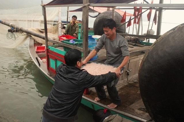 Ngư dân Hà Tĩnh hốt lộc trời đầu năm, kiếm tiền triệu sau vài giờ ra khơi - Ảnh 4.