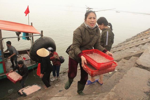 Ngư dân Hà Tĩnh hốt lộc trời đầu năm, kiếm tiền triệu sau vài giờ ra khơi - Ảnh 7.