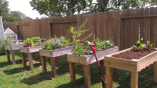 15 vườn rau tự tạo từ những ý tưởng độc đáo không ngờ - Ảnh 2.