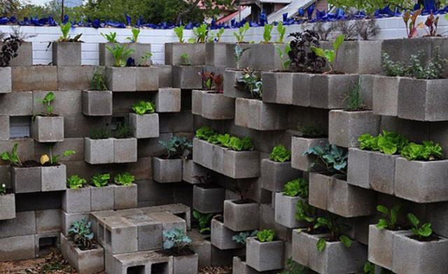 15 vườn rau tự tạo từ những ý tưởng độc đáo không ngờ - Ảnh 10.