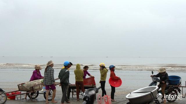 Trúng đậm mùa ruốc biển, ngư dân xứ Nghệ kiếm tiền triệu mỗi ngày - Ảnh 1.