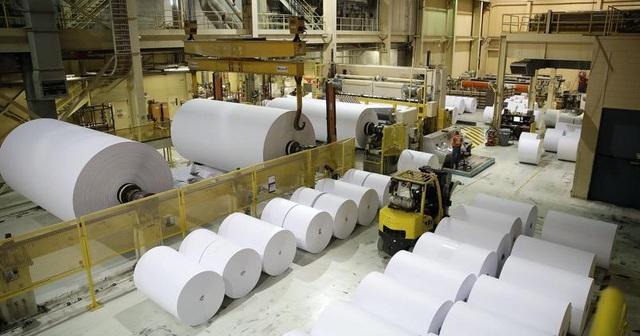 Ngành giấy: Thách thức mở rộng khi nhu cầu giấy bao bì tăng cao - Ảnh 1.
