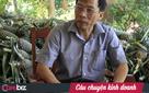 Bất chấp tuổi tác, bệnh tật, một Việt kiều Đức vẫn quyết tâm về quê khởi nghiệp, đưa trái cây sấy dẻo của Việt Nam ra thị trường quốc tế